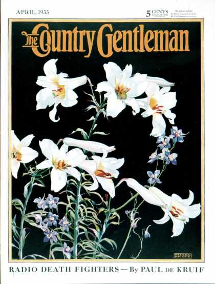 Country Gentleman - 1933-04-01: Easter Lilies (Nelson Grofe)