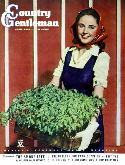 Country Gentleman - 1944-04-01: Flat of Tomatoes (L. Shorts)
