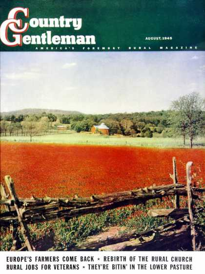 Country Gentleman - 1945-08-01: Photographic Landscape (R.A. Mawhinney)