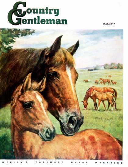 Country Gentleman - 1947-05-01: Mares and Foals (Francis Chase)