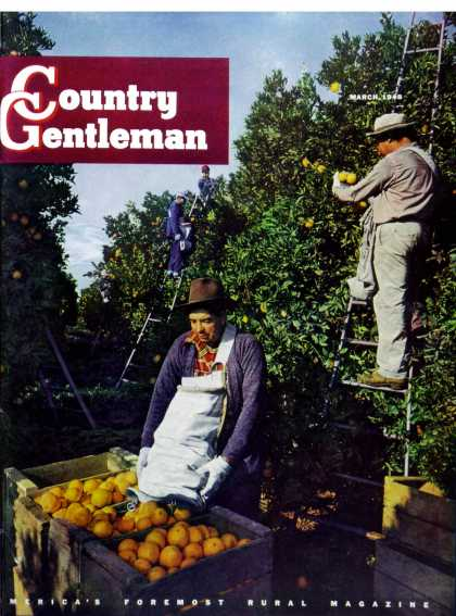 Country Gentleman - 1948-03-01: Navel Oranges (Will Connell)