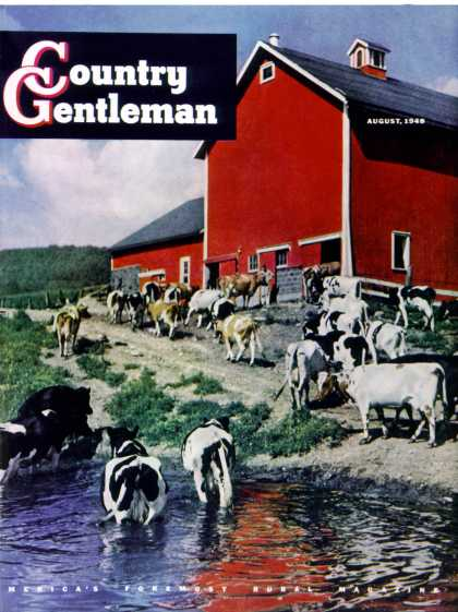 Country Gentleman - 1948-08-01: When the Cows Come Home (J. Julius Fanta)