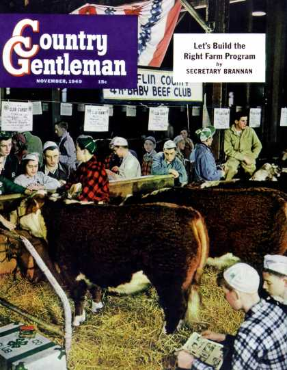 Country Gentleman - 1949-11-01: 4-H Baby Beef Club (Salvadore Pinto)