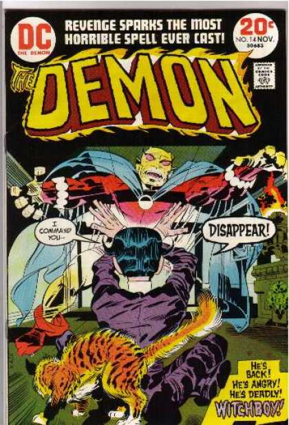 Demon 14 - Cat - Fire - Cape - Purple Coat - Bodysuit - Jack Kirby