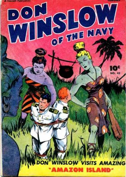 Don Winslow of the Navy 41