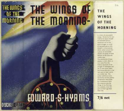 Dust Jackets - The wings of the morning.
