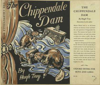 Dust Jackets - The Chippendale dam.