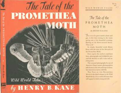 Dust Jackets - The tale of the promethea
