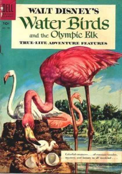 Four Color 700 - True-life Adventure Features - Walt Disneys - Water Birds - Olympic Elk - Water
