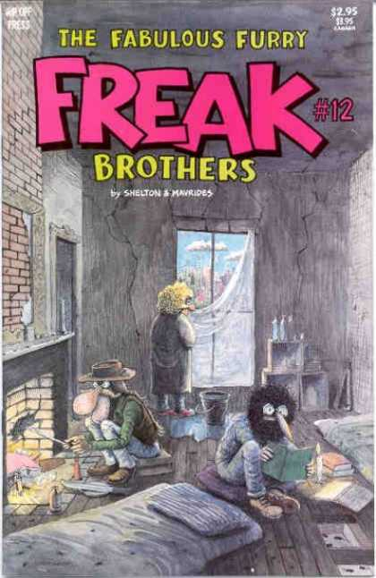 Freak Brothers 12