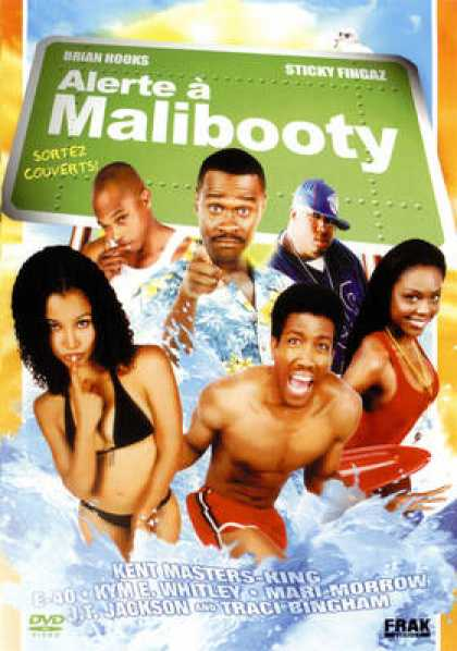 French DVDs - Alerte A Malibooty