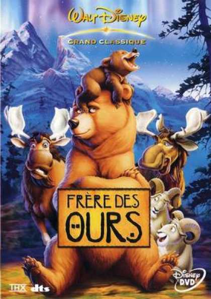 French DVDs - Brother Bear