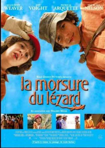 French DVDs - Holes