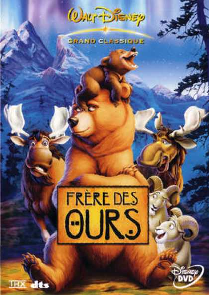 French DVDs - Frère Des Ours