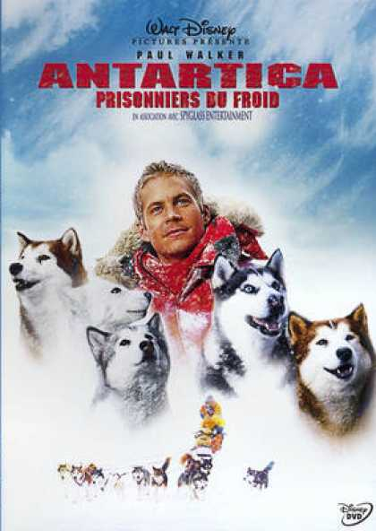French DVDs - Antartica