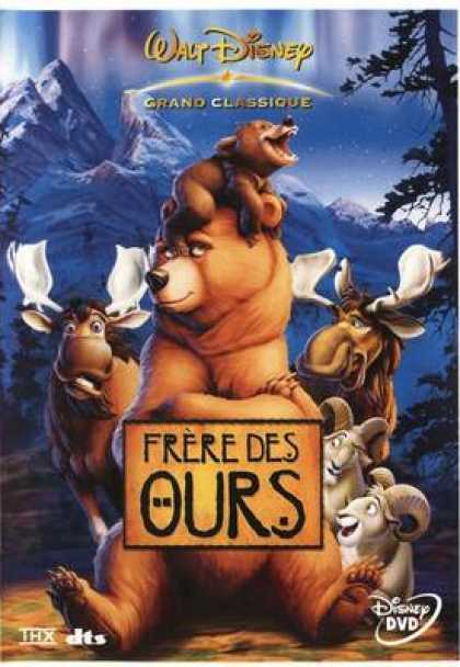French DVDs - Frere Des Ours