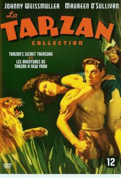 French DVDs - Tarzan Secret And New York Adventure