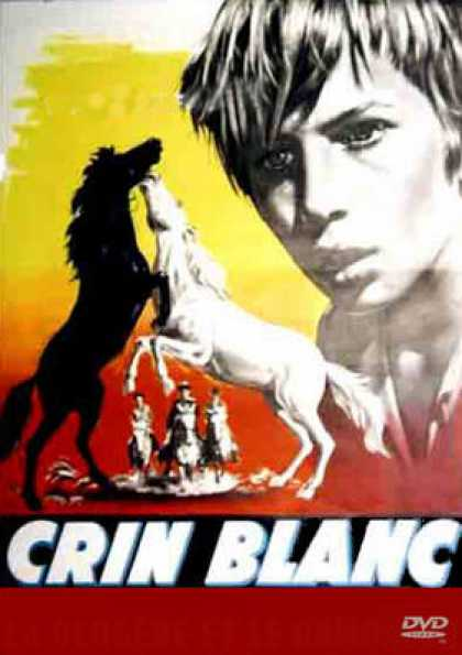 French DVDs - Crin Blanc