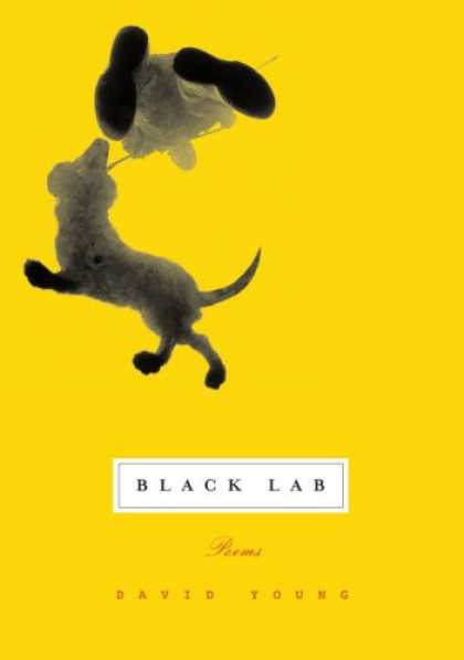 Greatest Book Covers - Black Lab