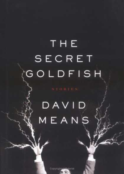 Greatest Book Covers - The Secret Goldfish