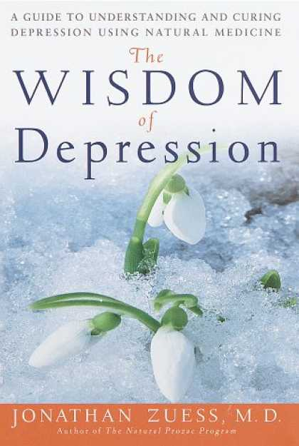 Harmony Books - The Wisdom of Depression: A Guide to Understanding and Curing Depression Using N