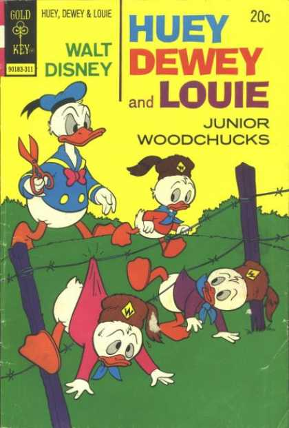 Huey, Dewey and Louie: Junior Woodchucks 23 - Donald Duck - Barb Wire Fence - Cub Scouts - Cought On Fence - Scissors