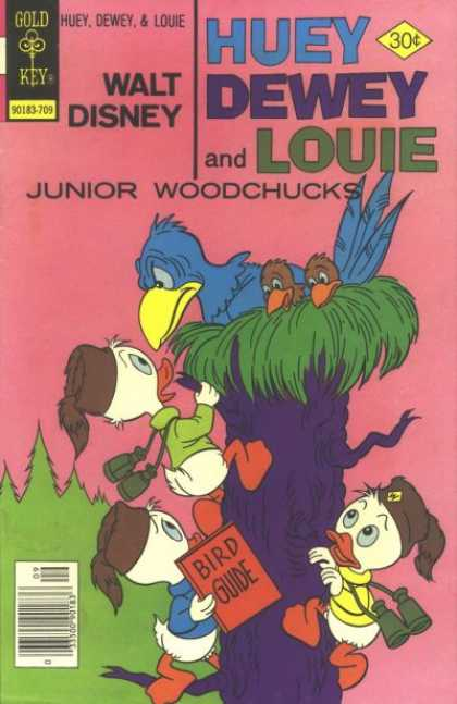 Huey, Dewey and Louie: Junior Woodchucks 46 - Climbing - Tree - Birds - Nest - Binoculars