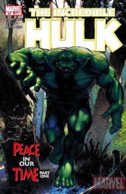 Hulk (2000) 88 - Brandon Peterson