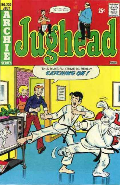 Jughead 230 - Archie - Kung Fu - Living Room - Tv - Dog