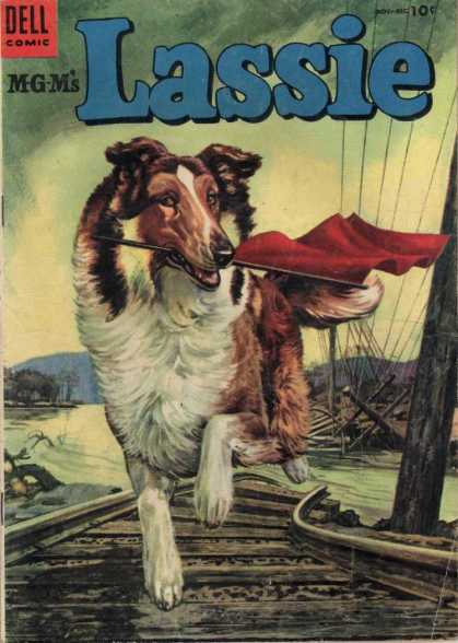 Lassie 19 - Border Collie - Train Tracks - Red Flag - Downed Power Lines - Lassie Running