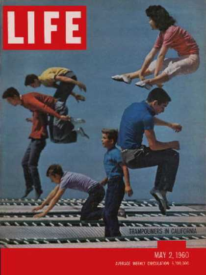 Life - Trampoliners