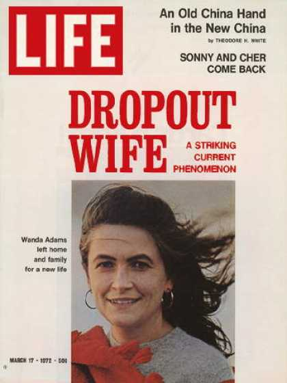 Life - Dropout wife