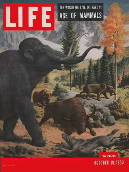 Life - Age of mammals