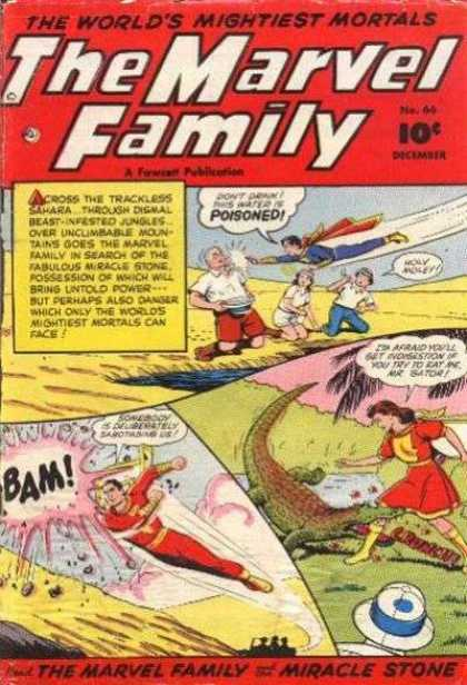 Marvel Family 66 - Crocodile - Superman - Man - Woman - Park