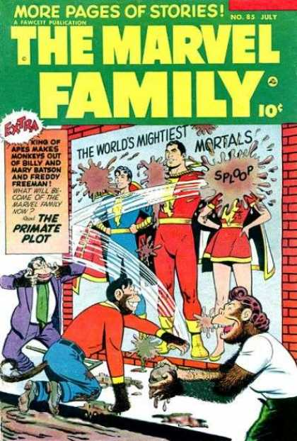 Marvel Family 85