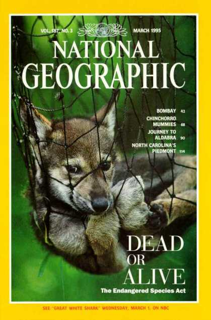 National Geographic 1192