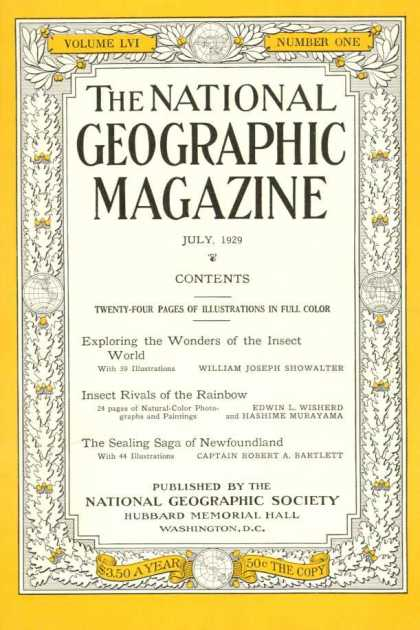 National Geographic 441