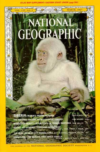National Geographic 854