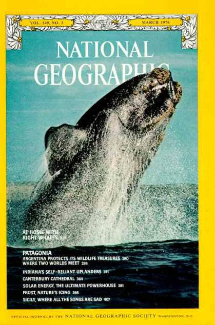 National Geographic 962
