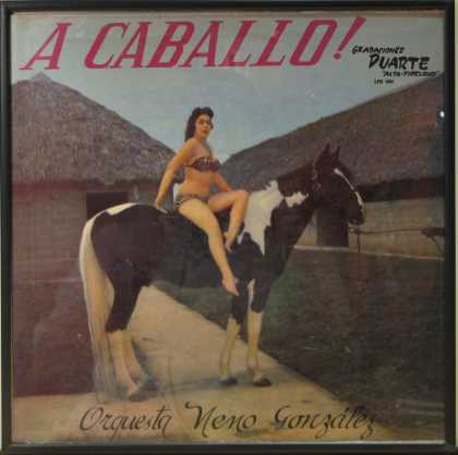 Oddest Album Covers - <<Bareback>>