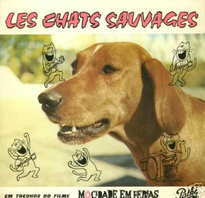 Oddest Album Covers - <<What dogs see>>