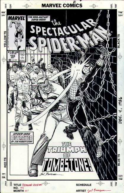 Original Cover Art - Spectacular Spiderman #155 Cover (1989