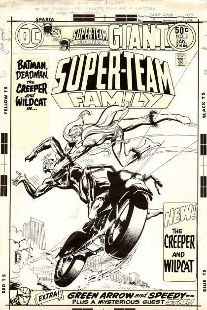 Original Cover Art - Super-Team Family #2 cover (1975) - Batman Deadman - New The Creeper And Wild Cat - Motorbike - Green Arrown And Speedy - Plus A Mysterious Guest Star
