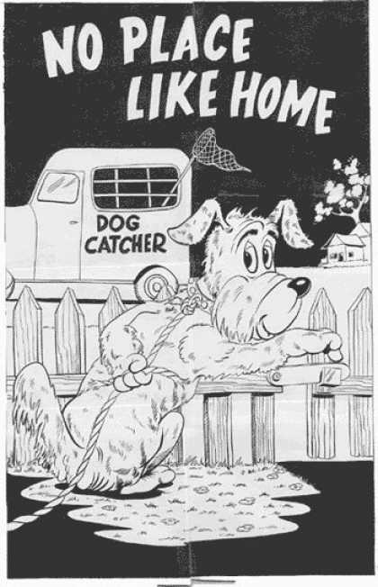 Original Cover Art - Funny Animal Cover - Dog Catcher - Truck - Net - Dog - Leash