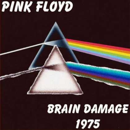 interpretation of pink floyds brain damage Lyrics to brain damage by pink floyd: the lunatic is on the grass / the lunatic is on the grass / remembering games and daisy chains and.
