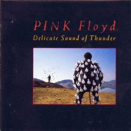 Pink Floyd - Pink Floyd - Delicate Sound Of Thunder