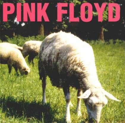 Pink Floyd - Pink Floyd - Dogs And Sheeps