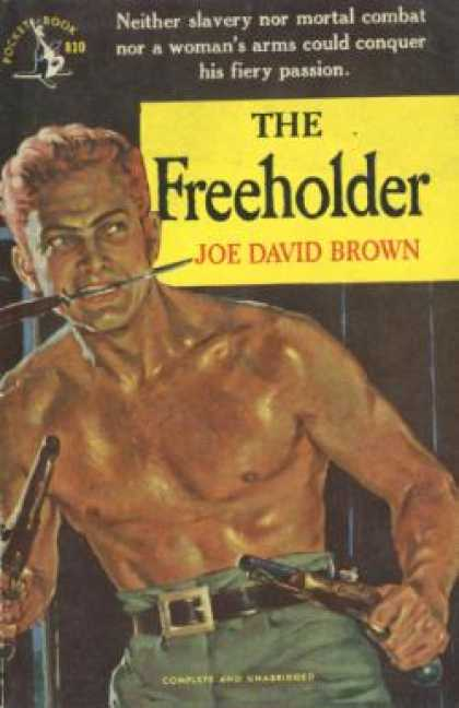 Pocket Books - The Freeholder - Joe David Brown