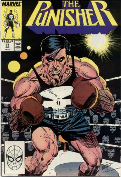 Punisher 21 - Boxing - Crowd - Man - Glove - Dark - Erik Larsen, Tim Bradstreet