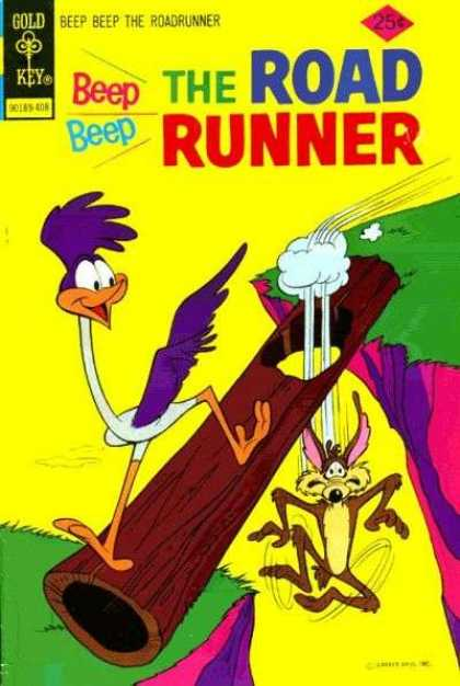 Road Runner 44 - Wile E Coyote - Cliff - Log - Hole - Fall